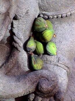 détail offrande de figues à Ganesh