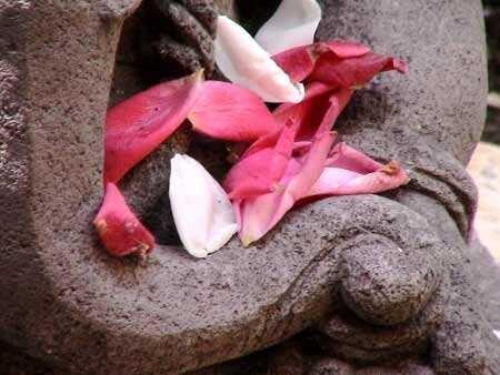 détail de trompe de Ganesh