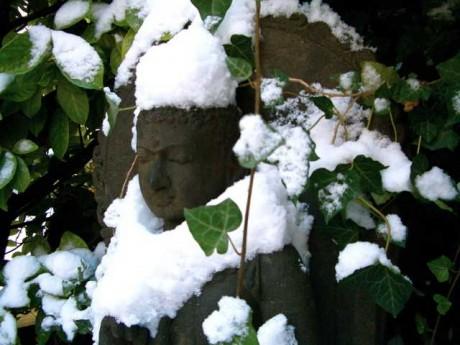 Bouddha en hiver